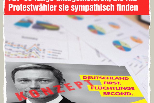 Geheimes FDP-Papier - Der Gazetteur
