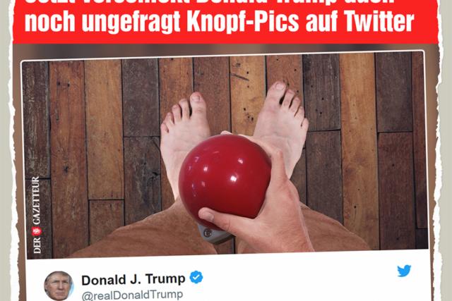 Trumps Buttonpic - Der Gazetteur
