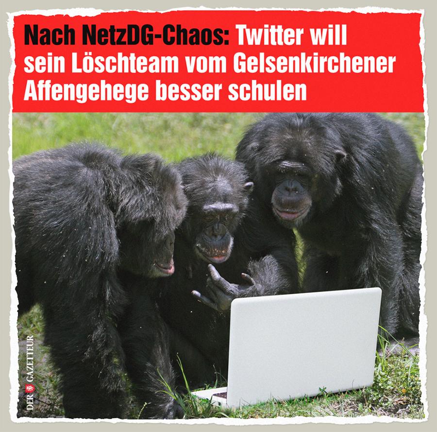 NetzDG-Löschteam - Der Gazetteur